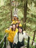 Forest_Tour